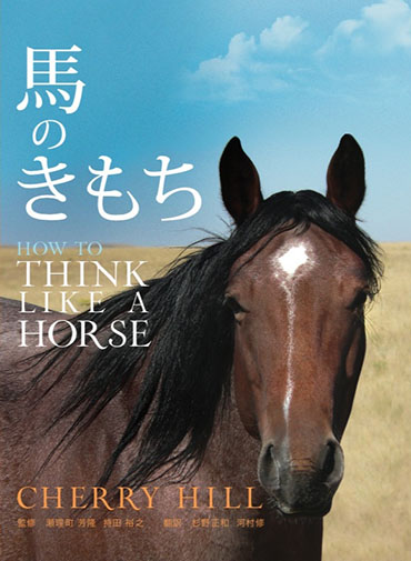 馬のきもち